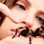 паук ползет по человеку