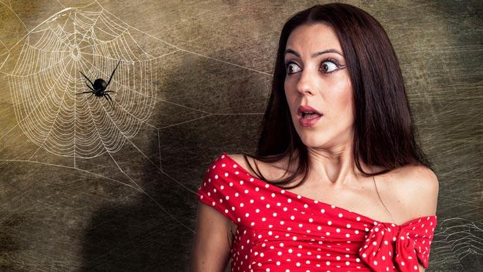 девушка увидела паука
