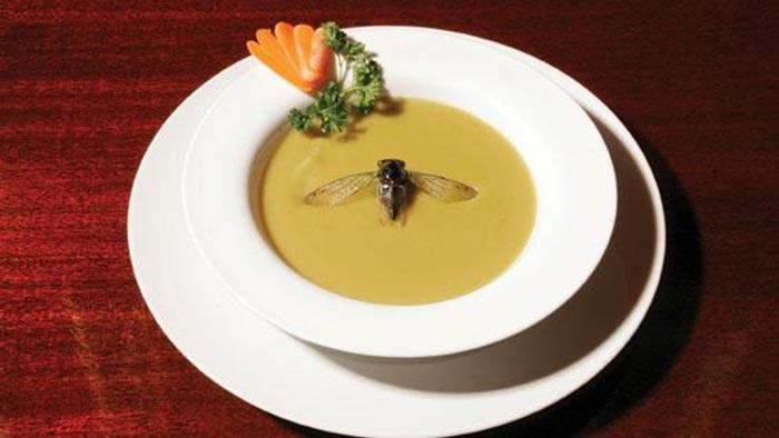 муха в супе