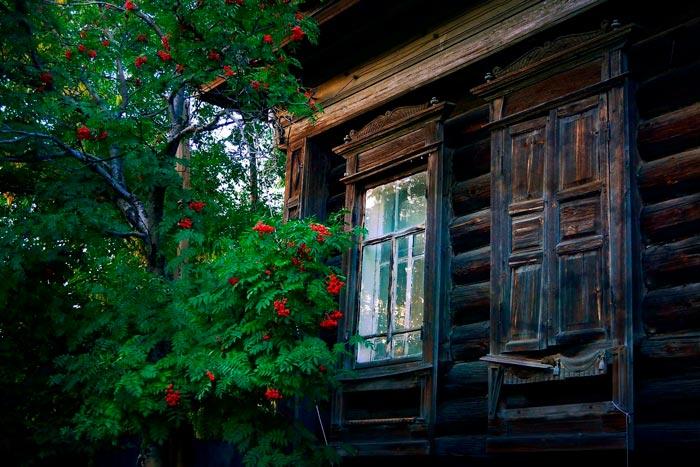 дом с рябиной