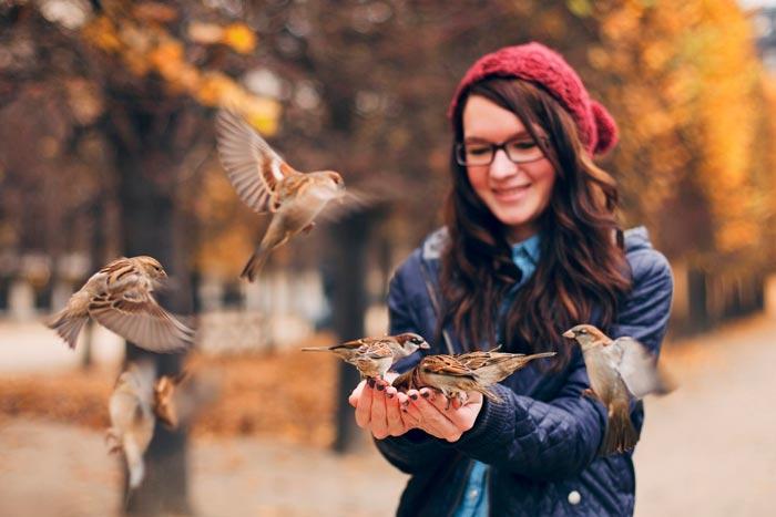 девушка кормит птиц